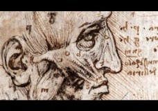 Leonardo Da Vinci the Anatomist – Nature Video