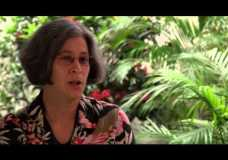 Robin L. Chazdon – Organization for Tropical Studies (OTS) interview (2014)