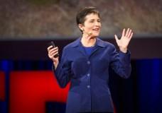 What Ants Teach Us? – Deborah Gordon TED Talk (2014)