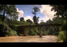 Wallace in Borneo – Bill Bailey's Jungle Hero – BBC (2013)