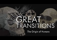Great Transitions: The Origin of Humans – Rob Whittlesey – HHMI (2014)