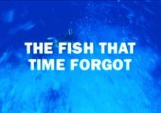Coelacanth: The Fish That Time Forgot – PBS NOVA (2001)