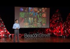 Decoding the Chemical Language of Nature – Jing-Ke Weng | TEDxBeaconStreet (2015)