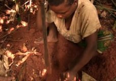 At an Mbendjele Camp in Congo – Gül Deniz Salalı (2015)